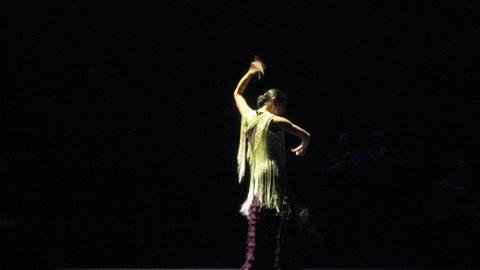 Noche_flamenca_1