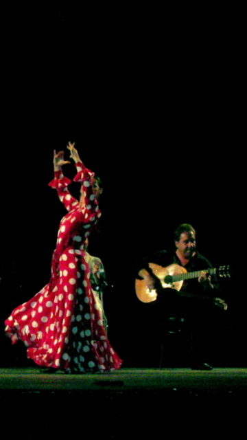 Noche_flamenca_2