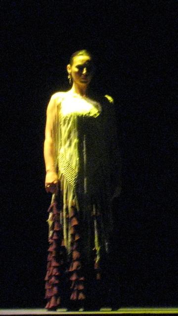 Noche_flamenca_6_2