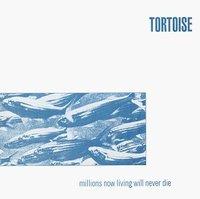 Tortoise_millions